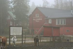 Pulleromäen talli, Jokikylässä